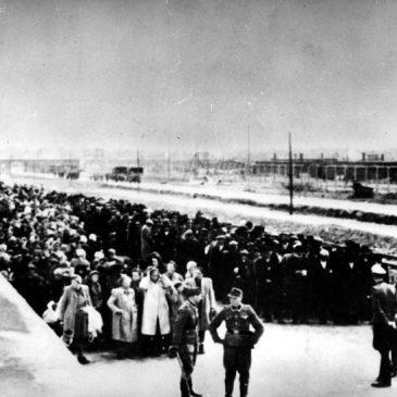 """Dr Agnieszka Zajączkowska-Drożdż: """"Knowledge about the Holocaust Is Negligible"""""""