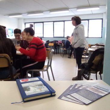 E-WORDS in Italian Schools